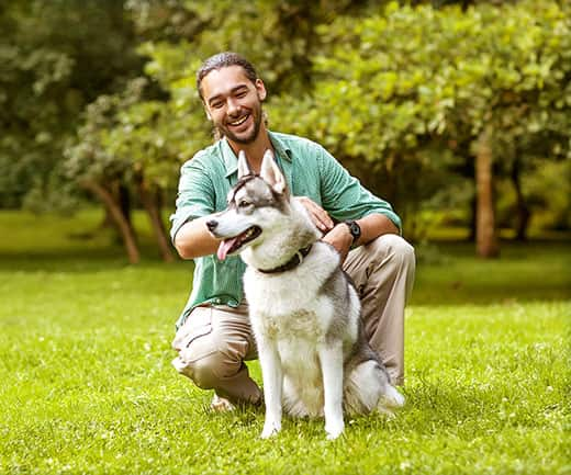 Man in a green shirt with a beard pets Siberian Husky in the park.
