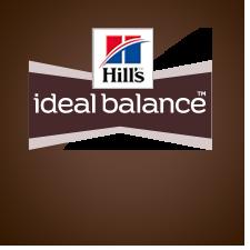 ideal balance hundefoder